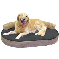 doctors foster and smith dog beds restate co