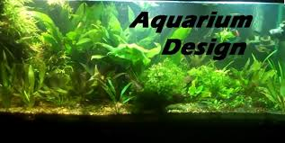 How To Set Up A Planted Aquarium Design. Desiging A Planted Tank ... September 2010 Aquascape Of The Month Sky Cliff Aquascaping How To Set Up A Planted Aquarium Design Desiging Tank Basic Forms Aqua Rebell Suitable Plants With Picture Home Mariapngt Nature With Hd Resolution 1300x851 Designs Unique Hardscape Ideas And Fnitures Tag Wallpapers Flowers Beautiful Garden Best 25 Aquascaping Ideas On Pinterest From Start To Finish By Greg Charlet