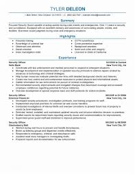 Sample Security Manager Resume For Ficer Of Information