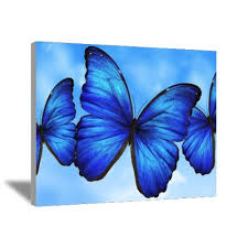 Blue Butterfly Painting Art