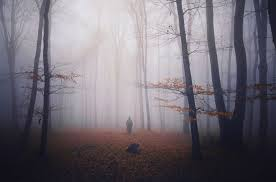 Forge Of Empires Halloween 2015 Lsung by 8 Haunted Places In North Carolina That Will Give You The Chills
