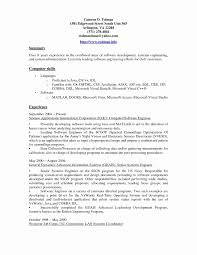 Resume Closing Statement Detail Customer Service Summary Examples