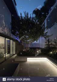 100 Mck Architects Courtyard At Dusk W House Sydney Australia Architect