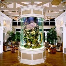 Picture Fish Tank Ornaments Fish Tank Ornaments S Tips To Get Fish ... Home Designs Built In Aquarium 4 Homes With Design Focused On Living Room Modern Style For L Tremendous Then Fish Tank Decorations Interior Stunning Ideas Images Best Idea Home Design Cuisine Amazing Decor Gallery Wonderful Bedroom 20 For House Goadesigncom Aquariums Refresh With Different Tropical Vibe Kitchen Decoration Cool The Divine Renovation 35 Youtube Rousing Channel Designsfor Tv Desing Bar Stools Counter Pictures On Wall