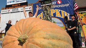 Pumpkin Fest Half Moon Bay by Wash State Grower Sets New U S Record With 2 363 Pound Pumpkin
