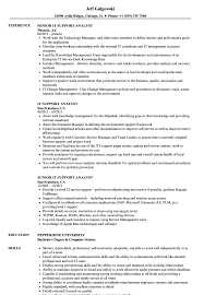 Download IT Support Analyst Resume Sample As Image File