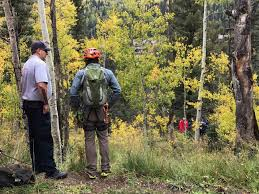 Christmas Tree Permits Durango Colorado by Holiday Or Vacation Content Durango Herald