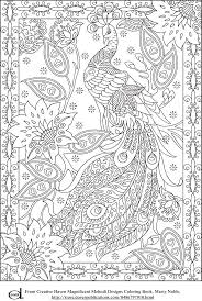 Peacock Feather Coloring Pages Colouring Adult Detailed Advanced Printable Kleuren Black And White