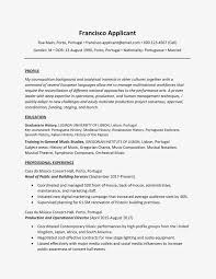 Sample Cv Profile Resume Statements Admin Statement For Customer ... Summary Example For Resume Unique Personal Profile Examples And Format In New Writing A Cv Sample Statements For Rumes Oemcavercom Guide Statement Platformeco Profiles Biochemistry Excellent Many Job Openings Write Cv Swnimabharath How To A With No Experience Topresume Informative Essays To