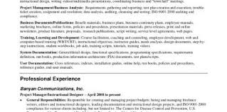 Professional Resume Summary For An Auditor Design And Ideas Page