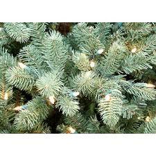 Santas Best 65 Just Cut Douglas Fir Pre Lit Artificial Christmas Tree