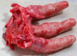 Scary Halloween Props For Haunted House by Bloody Severed Human Hand Silicone Halloween Prop Haunted House