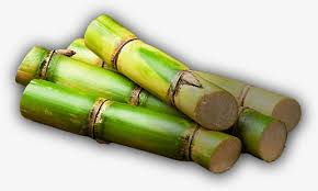 Real Green Cane Sugar PNG Image And Clipart