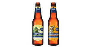 Sam Adams Pumpkin Ale 6 Pack by Samuel Adams Launches Hopscape And Fresh As Helles Chilled Magazine