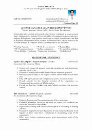 Marketing Executive Resume Samples Free Best Of Mis Manager Sample