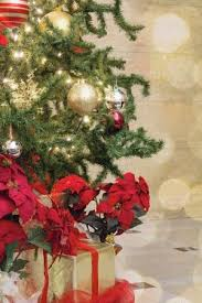 Christmas Tree Decoration With Bokeh Lights Sparkles Ornaments Ribbons Poinsettia And Presents Under The Stock