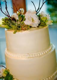 Schue Love Wedding Cake With Succulents And Twigs
