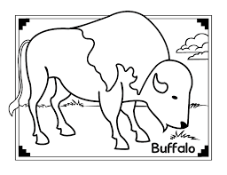 African Animals Buffalo Coloring Pages