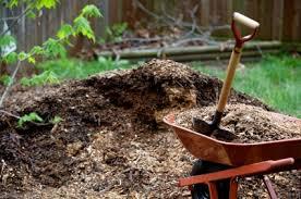 mon Types of Mulch for the Garden — Veggie Gardening Tips