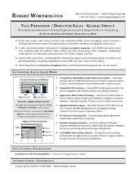 Vice President Sales Sample Resume VP Example Executive Writer
