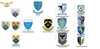 south african air force wikipedia