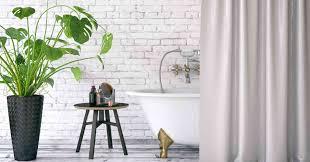 pflanzen fürs bad die 10 besten badezimmer pflanzen