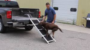 Using Your Dogs-Up Ramp - YouTube Folding Alinum Dog Ramps Youtube How To Build A Dog Ramp Dirt Roads And Dogs Discount Lucky 6 Ft Telescoping Ramp Rakutencom Load Your Onto Trump With For Truck N Treats Using Dogsup Pet Step For Pickup Best Pickup Allinone Pet Steps And Nearly New In Box Horfield Land Rover Accsories Dogs Uk Car Lease Pcp Pch Deals Steps Fniture The Home Depot New Bravasdogs Blog Car Release Date 2019 20