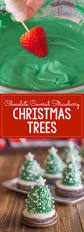 Homemade Christmas Tree Preservative by 17 Best Images About Weihnachten Diy Christmas Diy On Pinterest