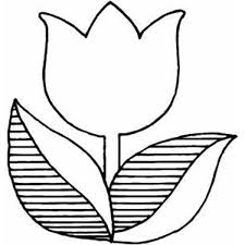Pin Tulip Clipart Coloring Page 6