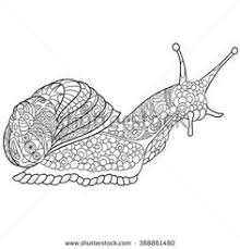 Zentangle Stylized Cartoon Snail Isolated On White Background Sketch For Adult Antistress Coloring Page Doodle ArtColoring BooksFree