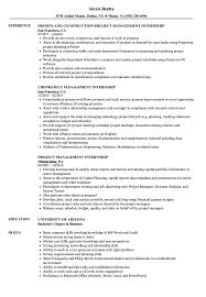 Download Project Management Internship Resume Sample As Image File