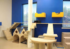 5 Great Cat Playroom Ideas - 42 Room Cat House Plans Indoor Webbkyrkancom Custom Built Homes Home And Architect Design On Pinterest Arafen Modest Decoration Modern Tree Fniture Picturesque Japanese Designer Creates Stylish For A Minimalist Designs Room With View Windows Mirror Owners Cramped 2740133 Center 1 Trees Vesper V High Base Gingham Slip Cover Cute Vintageinspired Kitchen Fresh Interior Inside Pictures Unique Real 89 For Ideas Wall Shelves Playgorund Cats 5r Cat House 6 Exciting Gallery Best Idea Home Design