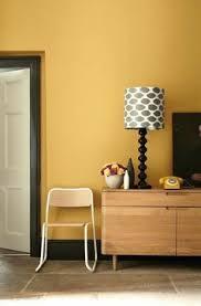 die 9 besten ideen zu wandfarbe senfgelb arbeitszimmer
