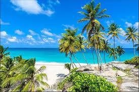 muralo fototapete strand 416 b x 254 h cm vlies tapete wandtapete ozean himmel palmen wohnzimmer schlafzimmer moderne wandbilder natur