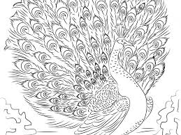Beautiful Advanced Coloring Pages With Free Advanced Coloring