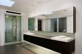 mirrored medicine cabinet in Bathroom Contemporary with Soffit