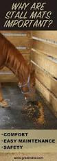 Loafing Shed Kits Utah by 183 Best Horse U0027n Around Images On Pinterest Horses Horse Stuff