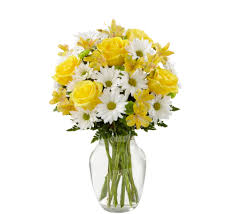 Ftd Flowers / October 2018 Wholesale Mothers Day 2019 Order Flower Deals And Get Free Shipping Money Ftd Coupons September 2018 Second Hand Car Deals With Free Insurance Send Bouquet Flowers Mixed Bouquets Delivered Ftd Wag Coupon Code Flowers Canada Smile Brilliant November Western Digital C4d Toys R Us 20 Off October Grace Eleyae Amazon March Cheryls Cookies Proflowers Deal Of The Day Calvin Klein Safeway Shoprite Online Shopping Avas Coupon Code 6 Last Minute Delivery Sites For With Promo Codes