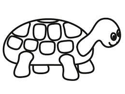 Turtle Color Sheet Coloring Pages For Adults Python 3 Unique Book Ideas