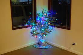 Kmart Christmas Trees Black Friday by January 2014 Define Liminal Finding The Space Between