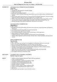 Download Title Coordinator Resume Sample As Image File