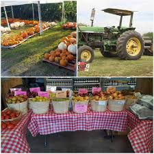 Powell River Pumpkin Patch by Fruit And Berry Patch Home Facebook
