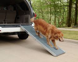 100 Dog Truck Ramp For Design Bravasdogs Home Blog The Best