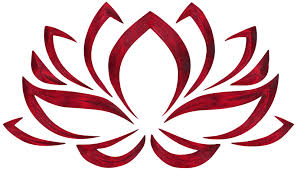 Ensanguined Lotus Flower No Background