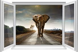 wandtattoo wandbild fenster elefant wohnzimmer deko