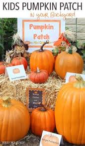 Pumpkin Patch Fresno Ca First News by 19 Fall Party Centerpiece Projects Autumnal Wedding