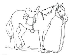 Realistic Horse Coloring Pages Mustang Jumping