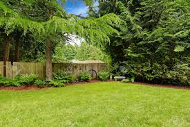 Back Yard Images & Stock Pictures. Royalty Free Back Yard Photos ... Playful Dog Running Away From Ball White Labradoodle Putting Greens Golf Just Like Grass Tour Backyard Green Cost Synlawn Itallations Reviews Testimonials Our Diy Kids Theater Emily A Clark Unique Architecturenice Little Bit Funky How To Make A Backyard Putting Green Wood Fence On Colorful House Stock Vector 606411272 Concrete Ideas Hgtvs Decorating Design Blog Hgtv Puttinggreenscom One Story Siding With Lawn View From The