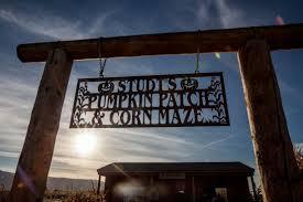 Pumpkin Patch Pueblo County by Studt U0027s Pumpkin Patch And Corn Maze