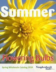 summer catalog 2018 den berg bulb inc by ruigrok